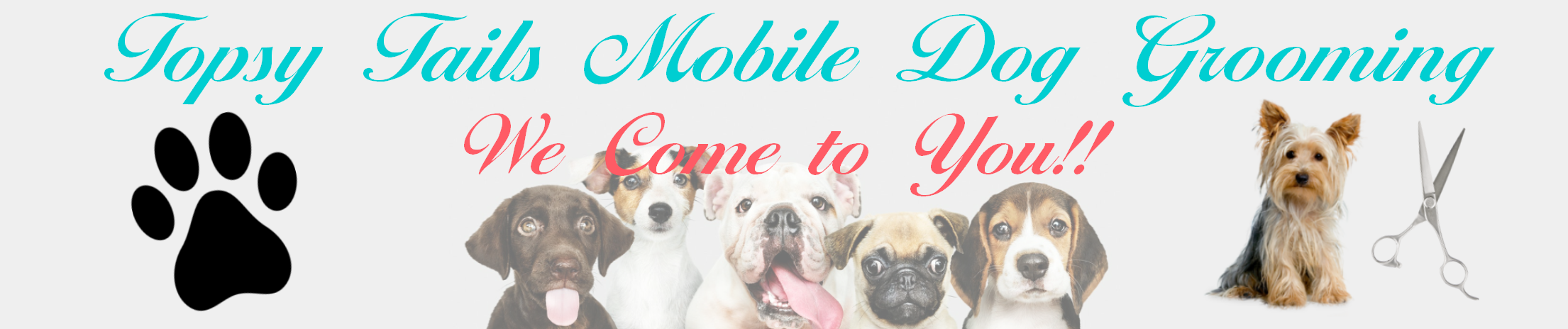 Topsy Tails Mobile Dog Grooming
